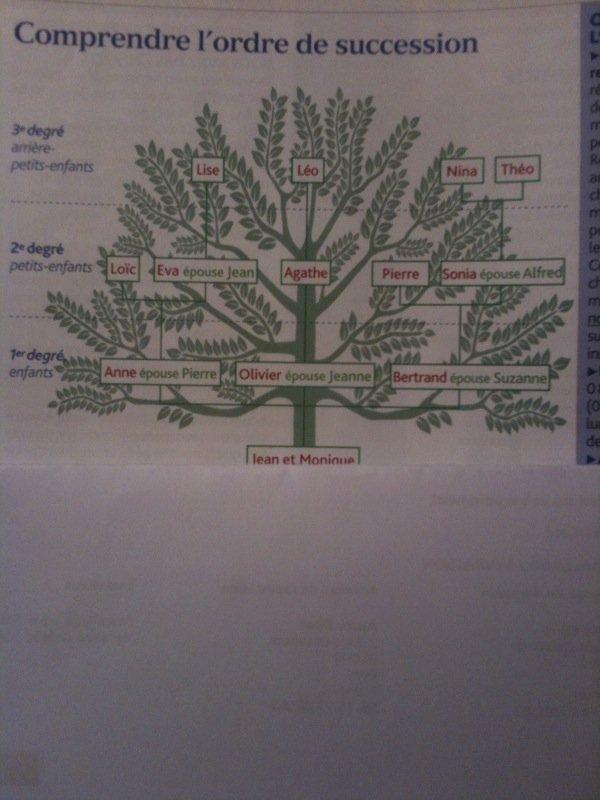 arbregnalogiquephoto.jpg