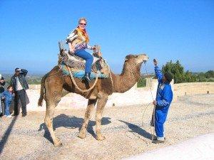 à Dada sur un chameau ......!!!!! dans animaux-sauvetage-barbarie animale-divers Photo-224-300x225